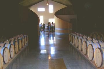 Day Trip Hop-On Hop-Off Wine Tasting Tour from Morro and Cayucos near San Luis Obispo, California