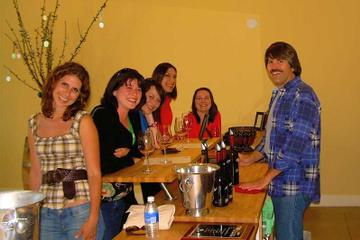 Day Trip Hop-On Hop-Off Wine Tasting Tour from Paso Robles near Paso Robles, California