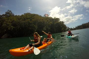 Explore Pittwater on a Double Kayak