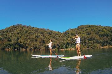 Ku-ring-gai Chase National Park tours met een paddleboard