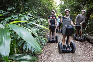 Whitsunday: Segway-Erkundungstour im Regenwald