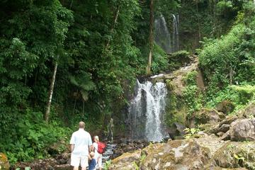 Waterfall and Hot Springs Mud Bath Tour in Rincon de la Vieja