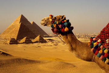 Tour to Giza Pyramids and Cooking Class with Local