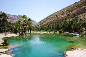 Private Tour: Day Trip Wahiba Sands Wadi Bani Khalid Tour