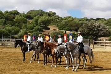 Trip to an Andalusian Bull and Horse