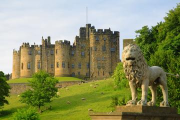 Viking Coast and Alnwick Castle Small Group Day Tour from Edinburgh