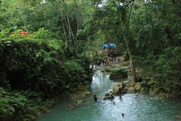 Dunn's River Falls, White River Tubing and Blue Hole Tour plus...