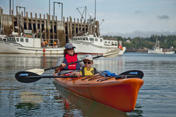 Kayaking Eco Tour on the Bay of Fundy
