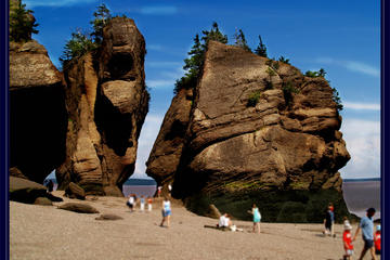 Day Trip Private Full-Day Tour to Hopewell Rocks from Saint John near Saint John, Canada