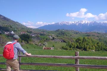 4-Day Trekking Tour in the Carpathians: Bucegi Natural Park and...