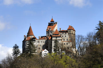 Bran Castle and Rasnov Fortress Tour from Brasov with Optional Peles...