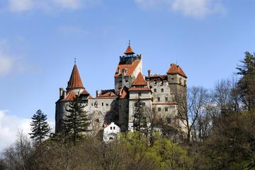 Excursion au château de Bran et à la...
