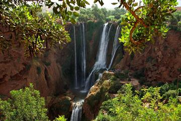 Ouzoud Waterfalls Full Day Tour from Marrakech