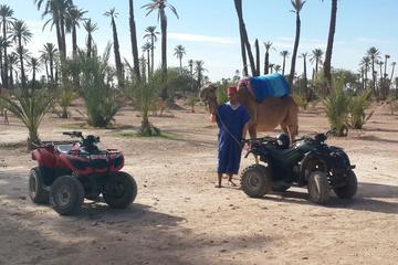 Quad à Marrakech et balade à dos de chameau