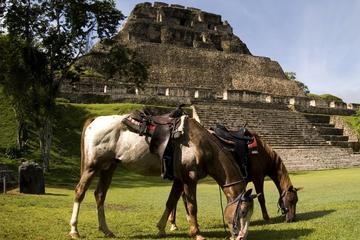 Excursión a caballo hasta Xunantunich