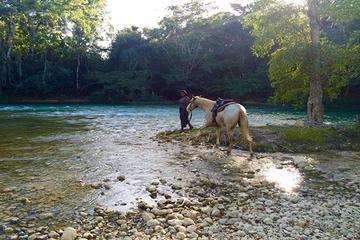 Excursión privada a caballo al atardecer desde San Ignacio