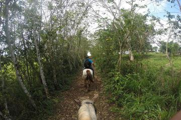 Private Kiskadee Trail: Horse Riding Tour of the Countryside