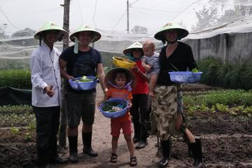 Farm-To-Table Healthy Cooking Class From Ho Chi Minh City