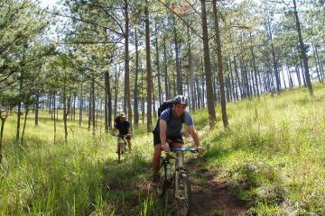 4-Day Dalat Mountain Bike Tour