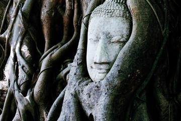 Exploración del Ayutthaya histórico en bicicleta