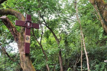 Hong Kong Small-Group Hiking Tour: from Modern City to Ancient Village