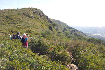 Day Hike in Sintra Palaces or Natural Park