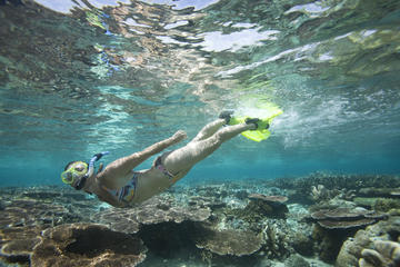 Snorkeling Package at Padangbai with...