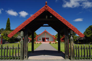 Full-Day Rotorua Shore Excursion Including Te Puia and Hells Gate...