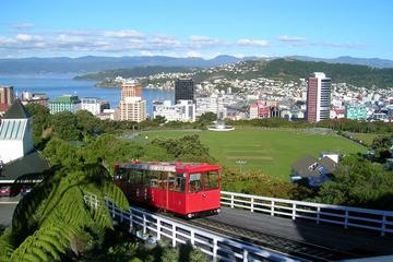 Shore Excursion: Wellington Highlights Small-Group Tour