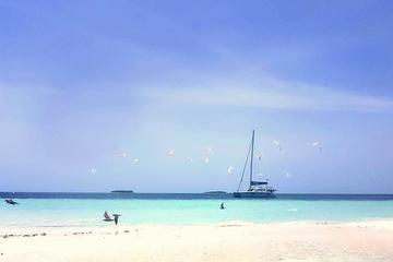 Sandbank Snorkeling and Sunset Cruise