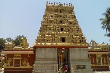 Mangalore Shore Excursions Tour