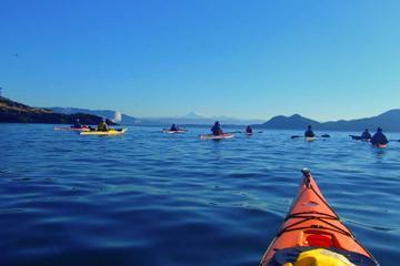 Deschutes River Kayaking Tour from...