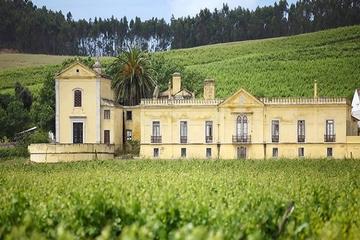 Excursão particular pela vinícola Quinta do Gradil saindo de Lisboa