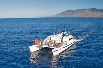 Afternoon Snorkeling Adventure to Coral Gardens or Molokini with Lunch