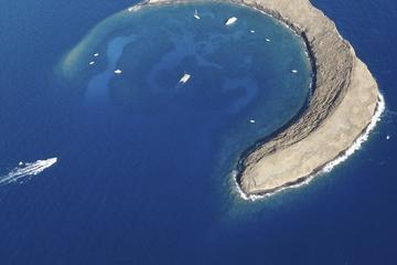 Avventura di snorkeling a Molokini e a Turtle Town