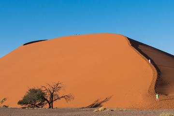 3-Day Sossusvlei Express from ...