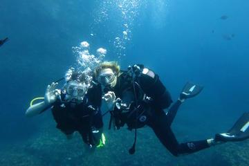 Sortie en plongée sous-marine à Isola Bella au départ de Taormine
