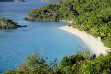 Half-Day Tour to Trunk Bay Beach from...