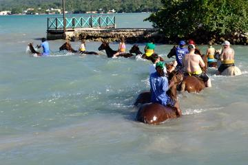 Horse Back Ride and Swim from Falmouth Cruise Port