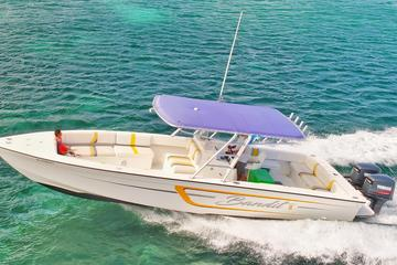 Speed Boat Dash and Splash