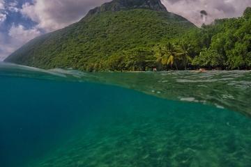 St Lucia Private Half-Day Coastal...