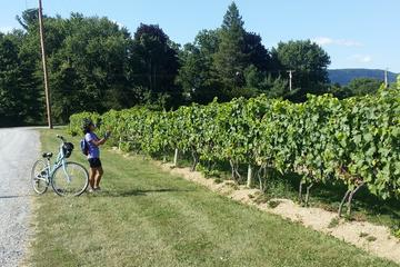 Book Private Hudson Valley Winery and Distillery Bike Tour on Viator