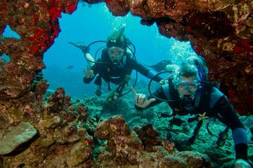 Excursão de mergulho com certificado de Maui
