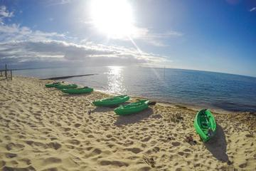 Half-Day Guided Kayak Tour of Port Phillip Bay from Rosebud West