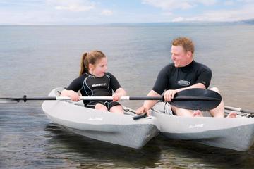 Mornington Combo: Port Phillip Bay Guided Kayak Tour with Peninsula...