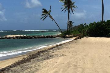 Afternoon Nevis Beach Break