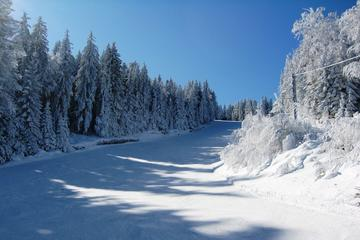 Private Arrival Transfer from Sofia Airport to Borovets or Bansko