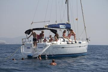Excursión privada en barco por...
