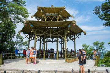 Privétour: Fotografietour nationaal park Tijuca