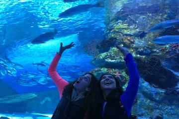 Das Aquarium von Antalya inklusive...
